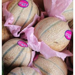 2 Melons origine Françe