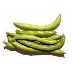 1 kg de fèves BIO ORIGINE SICILE