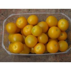 250g Tomates cerises jaunes DE NOTRE PRODUCTION