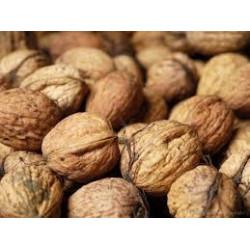 1 kg de noix fraîches de notre production