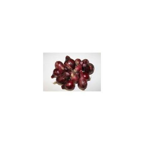 500g Oignons rouges MOYENS ET GROS de notre production
