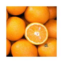 2 kg oranges A JUS bio  sans traitement origine Sicile