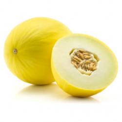 1 Melon JAUNE(le kg) origine sicile poids variable  entre 1.2kg et 2.5kg