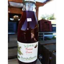 1 bouteille de JUS DE POMMES-CERISE BIO - produit local