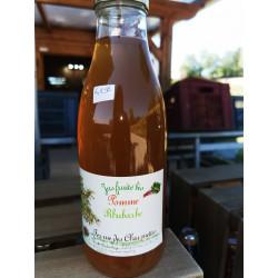 1 bouteille de JUS DE POMMES-RHUBARBE BIO - produit local