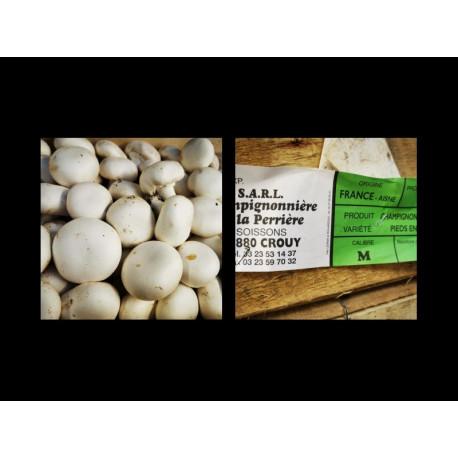 500g Champignons Blancs (La Perriére - Crouy)