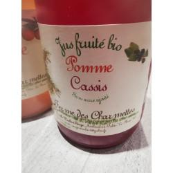 """1 bouteille de jus POMME CASSIS """"BIO"""" produit local"""