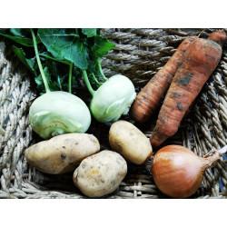 """Panier soupe """"choux rave -carottes"""""""